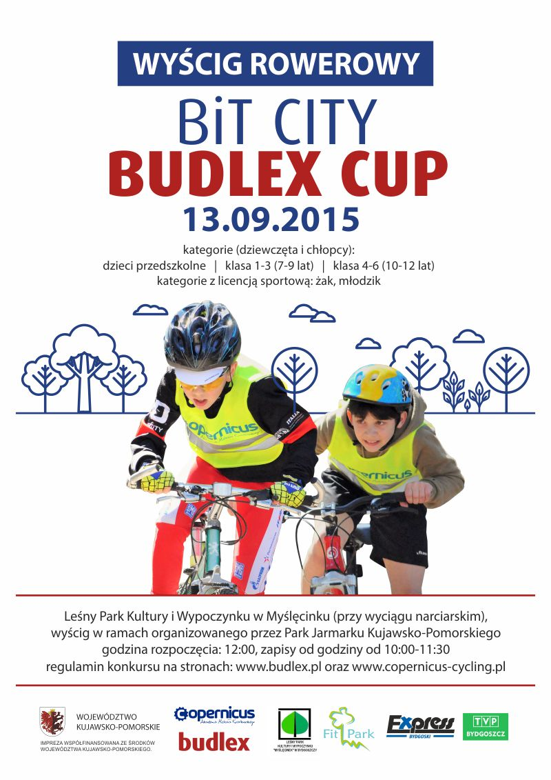 bit-city-budlex-cup-internet