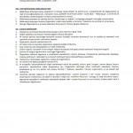 Regulamin - 4